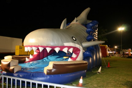 Inflatable Shark Slide1